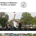 Bridges To Wellness Header